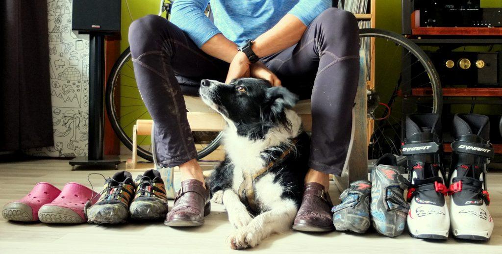 Psi trening – czyli historia Pigmeja w oczach jego psa